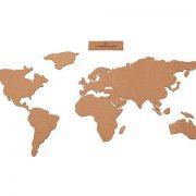 Harta Lumii panou de pluta